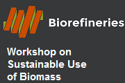 Sustainable Use of Biomass